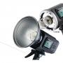 Импульсный осветитель Godox Witstro AD600B с TTL аккумуляторный 26304
