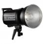 Импульсный осветитель Godox QT600IIM высокоскоростной 26263