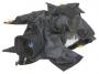 Дождевой чехол Almi Teta Z1/FX1 для видеокамеры