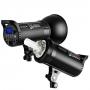 Импульсный осветитель Godox DS300II 26272