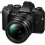 Фотоаппарат Olympus OM-D E-M5 mark III 12-40 kit черный