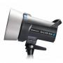 Импульсный осветитель Elinchrom D-Lite 4 RX