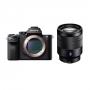 Фотоаппарат Sony Alpha A7S II (ILCE-7SM2) kit 24-70 f/4 ZA OSS