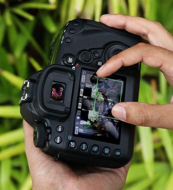Обрезка и изменение размера Canon EOS 5d MarkIV