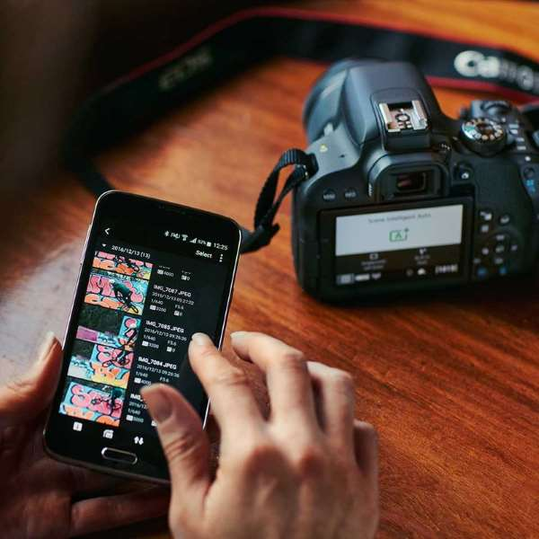 Пример фотографии с Canon EOS 800D