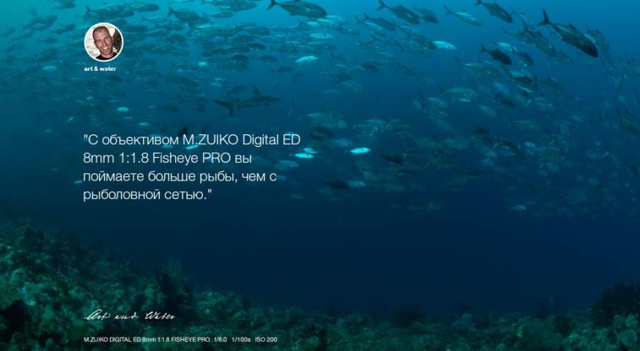 Объектив Olympus M.ZUIKO DIGITAL ED 8mm 1:1.8 FISHEYEPRO описание